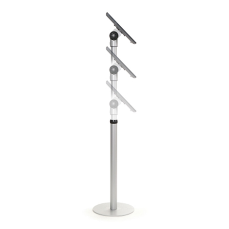 Free-standing mount for Apple's iPad®
